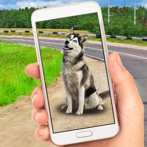 Collect Pocket Dogs Apk Mod latest 1.1