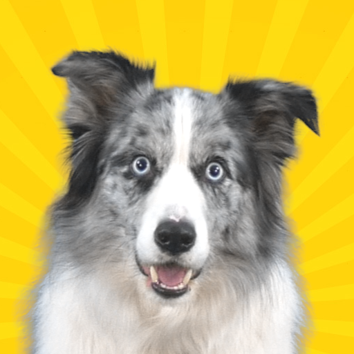 Real Pets™ by Fruwee Apk Pro Mod latest 297