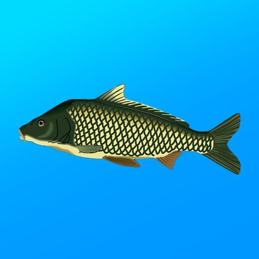 True Fishing. Fishing simulator  1.14.4.670 Apk Mod (unlimited money) Download latest