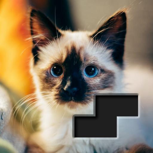 Block Square Jigsaw Puzzle  Apk Mod latest 1.1.2