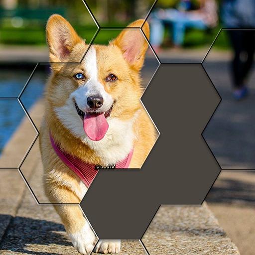Hexa Puzzle Jigsaw: Anime Collection HD Apk Pro Mod latest 1.15