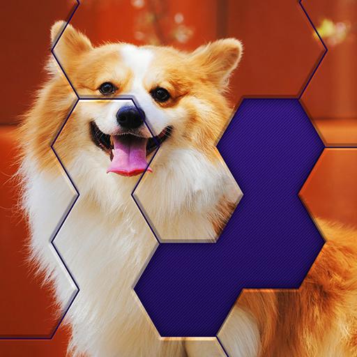 Hex Block Jigsaw Apk Pro Mod latest 1.5.4