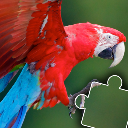 Kids animal jigsaw puzzles  Apk Pro Mod latest