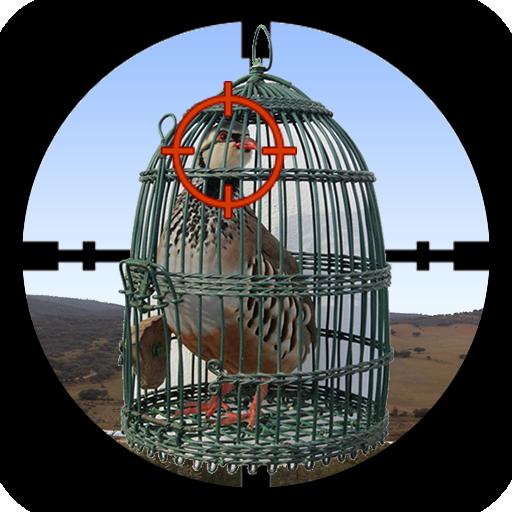 Partridge Hunter Apk Pro Mod latest