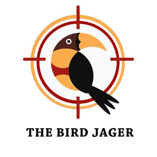Bird Jager  Apk Mod latest