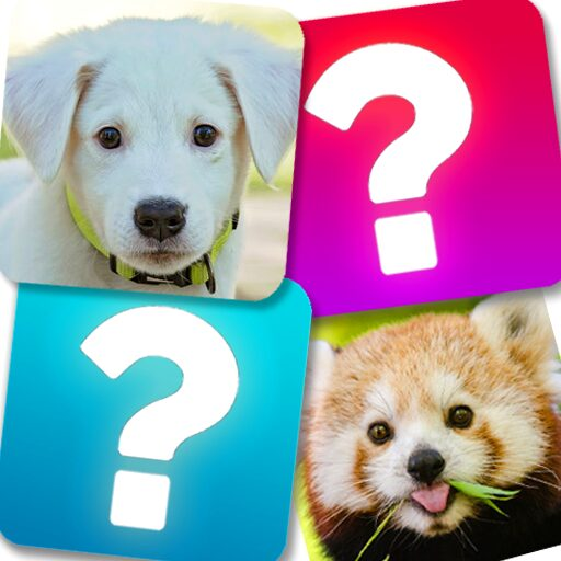 Memory Game: Animals  Apk Mod (unlimited money) Download latest