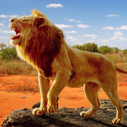 The Lion 1.0.3 Apk Mod (unlimited money) Download latest